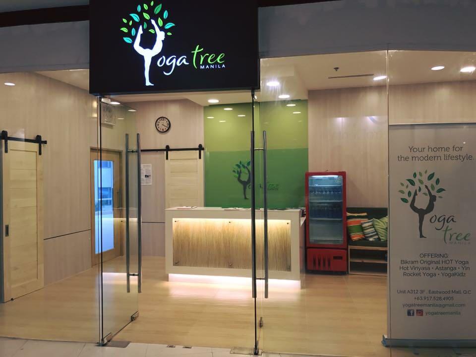 yoga tree-1