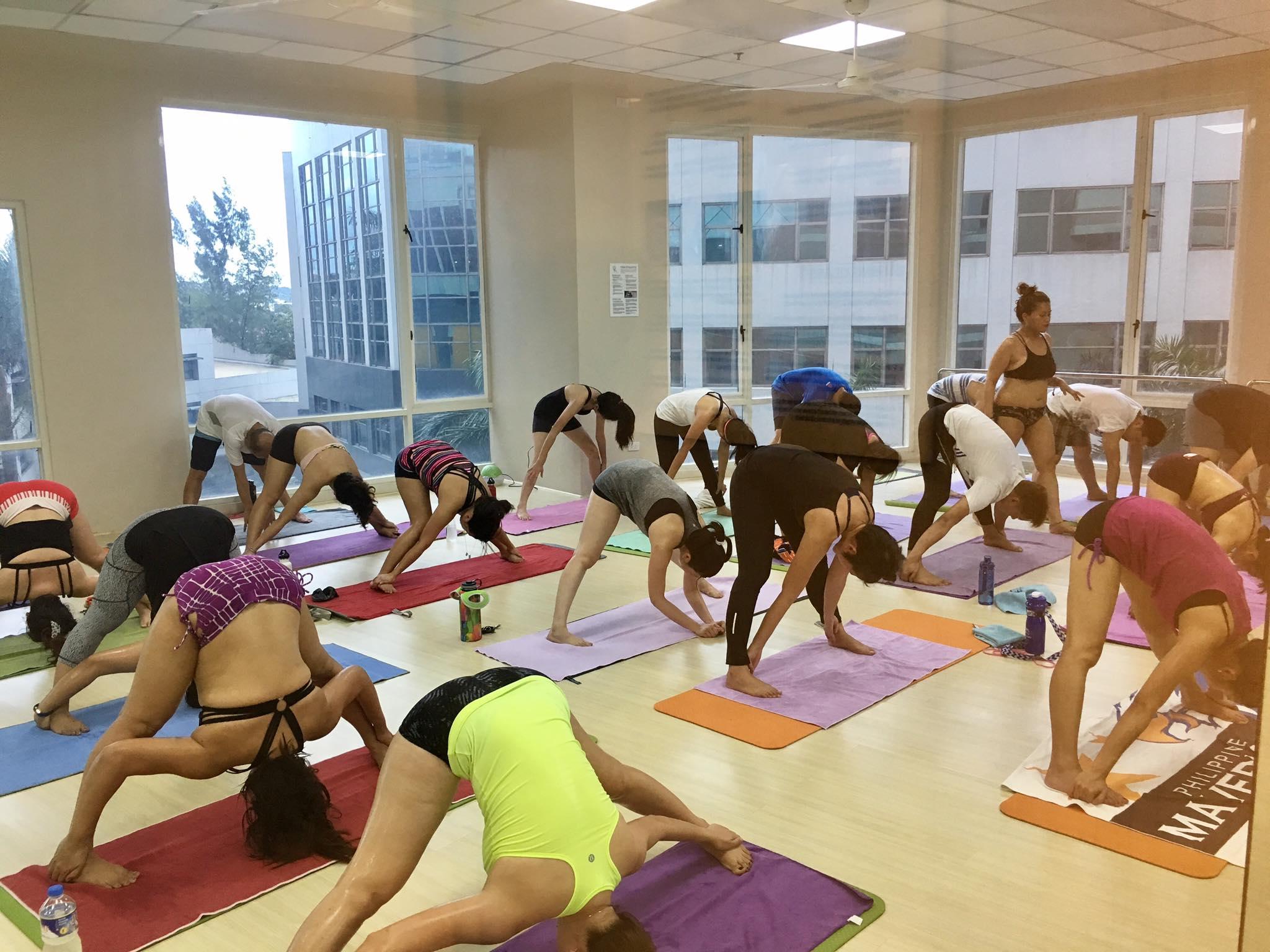 yoga tree-3